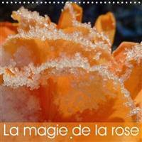 Magie de la Rose 2017