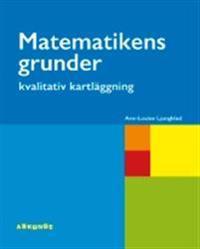 Matematikens grunder - kvalitativ kartläggning