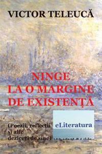 Ninge La O Margine de Existenta: Poezii, Reflectii Si Alte Deziceri de Sine