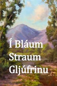 I Blaum Straum Gljufur: In Blue Creek Canyon (Icelandic Edition)