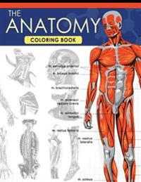 The Anatomy Coloring Book: A Complete Study Guide (9th Edition)