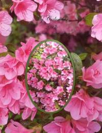 My Calendar - 2017 - Pink Passion Azaleas Edition: The House of Ivy