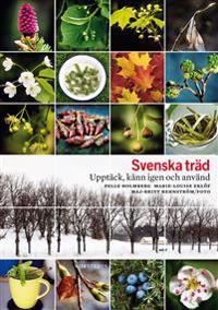 Svenska träd : upptäck, känn igen och använd