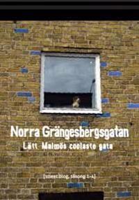 Norra Grängesbergsgatan : lätt Malmös coolaste gata