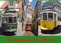 Trams in Lisboa 2017