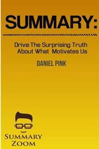 Summary: Drive: The Surprising Truth about What Motivates Us by Daniel Pink