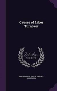 Causes of Labor Turnover