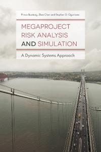 Megaproject Risk Analysis and Simulation