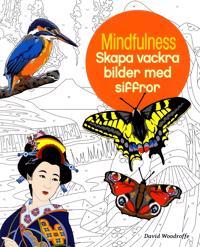 Mindfulness : skapa vackra bilder med siffror