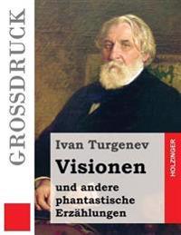 Visionen Und Andere Phantastische Erzahlungen (Grossdruck)