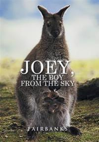 Joey, the Boy from the Sky
