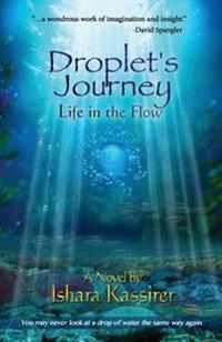 Droplet's Journey
