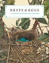 Nests & Eggs Notecards