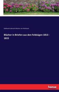 Blucher in Briefen Aus Den Feldzugen 1813 - 1815