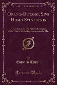 Orang-Outang, Sive Homo Sylvestris