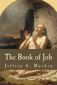 The Book of Job: A Commentary