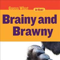 Brainy and Brawny: Gorilla