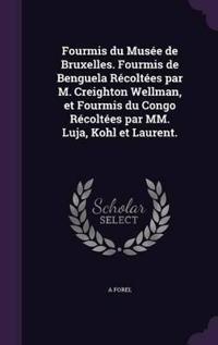 Fourmis Du Musee de Bruxelles. Fourmis de Benguela Recoltees Par M. Creighton Wellman, Et Fourmis Du Congo Recoltees Par MM. Luja, Kohl Et Laurent.