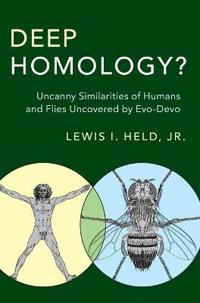 Deep Homology?