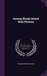 Among Rhode Island Wild Flowers