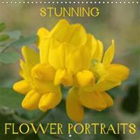 Stunning Flower Portraits 2017