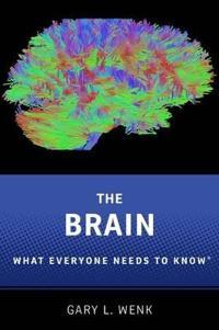 Brain Wentk P
