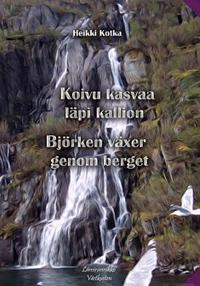 Koivu kasvaa läpi kallion - Björken växer genom berget
