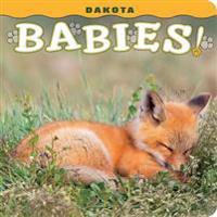 Dakota Babies!