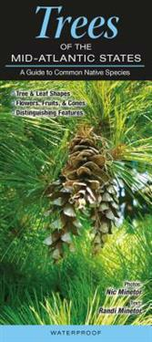 Trees of the Mid-Atlantic States: A Guide to Common Native Species
