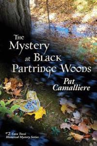 The Mystery at Black Partridge Woods
