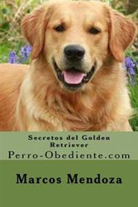 Secretos del Golden Retriever: Perro-Obediente.com