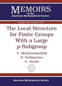 The Local Structure for Finite Groups with a Large $P$-Subgroup