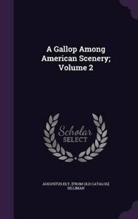 A Gallop Among American Scenery; Volume 2