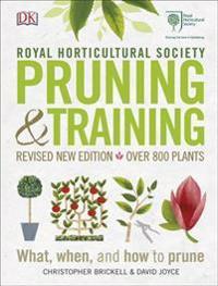 RHS PruningTraining