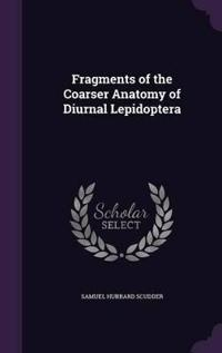 Fragments of the Coarser Anatomy of Diurnal Lepidoptera
