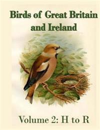 Birds of Great Britain and Ireland: Prints from England, 1908