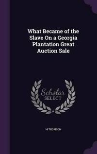 What Became of the Slave on a Georgia Plantation Great Auction Sale