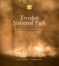 Tiveden National park : from old-growth forest to enchanted forest