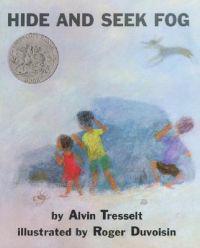 Hide and Seek Fog