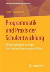 Programmatik Und Praxis Der Schulentwicklung
