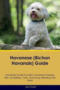 Havanese (Bichon Havanais) Guide Havanese Guide Includes