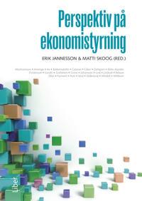 Perspektiv på ekonomistyrning