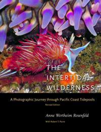 Intertidal Wilderness