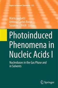 Photoinduced Phenomena in Nucleic Acids