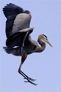 Great Blue Heron in Flight Bird Journal: 150 Page Lined Notebook/Diary