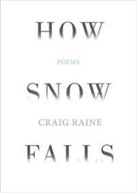 How Snow Falls