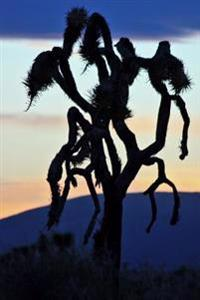 Silhouette of a Joshua Tree at Dusk Journal: 150 Page Lined Notebook/Diary