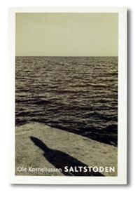 Saltstoden : roman