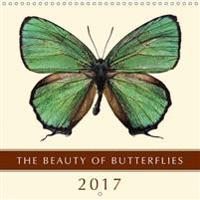 The Beauty of Butterflies 2017