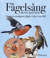 Fågelsång runt knuten : Sveriges vanligaste fåglar i ljud och bild